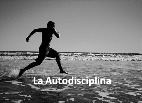 AUTO DISCIPLINA, INDISPENSABLE PARA EL ÉXITO PROFESIONAL Y EMPRESARIAL