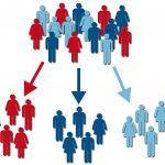 Segmentar y fidelizar el mercado: claves para el éxito empresarial